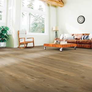 Modern living room   Floor Dimensions Design Centre