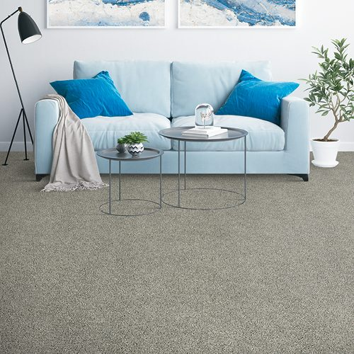 Grey Carpet in leaving room | Floor Dimensions