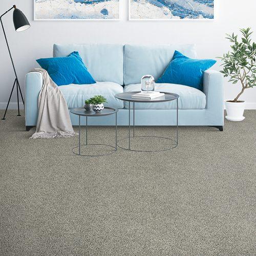 Grey Carpet in leaving room | Floor Dimensions